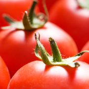 Juicy-Tomatoes-2